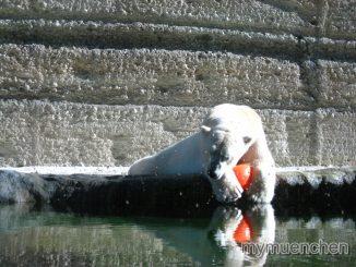 Aktionswochenende ,Zeichen , Wasser ,Eis, Zoo, Hellabrunn ,Muenchen,