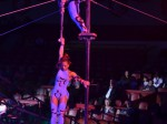 Circus Krone - die 1. Winterspielzeit