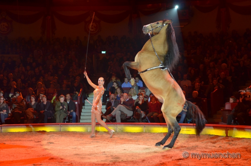 Circus Krone 2014