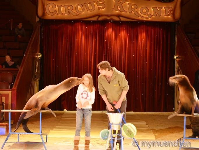 Öffentliche Dressurprobe der Seelöwen im Circus Krone