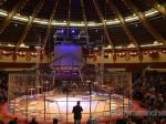 Martin Lacey jr.: Kommentierte wissenschaftliche Raubtierprobe im Circus Krone