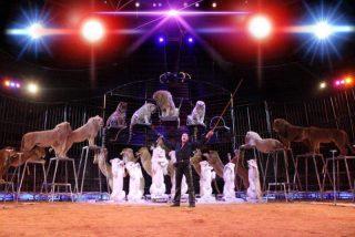 Quelle: Circus Krone