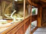 Neue Entdeckerhöhle in Hellabrunn