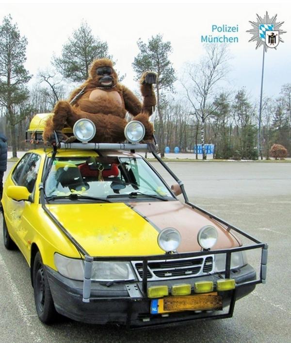 Chaos bei Gebrauchtfahrzeug-Rallye – 16 Niederländer aus dem Verkehr gezogen