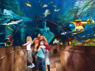 Happy Birthday, Atlantis! Oder wie man 600 Tausend Liter Wasser versichert